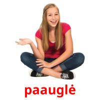 paauglė picture flashcards