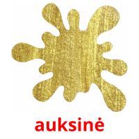 auksinė picture flashcards