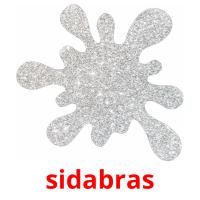 sidabras picture flashcards