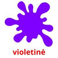 violetinė picture flashcards