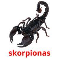 skorpionas picture flashcards
