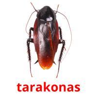 tarakonas picture flashcards