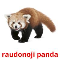 raudonoji panda picture flashcards