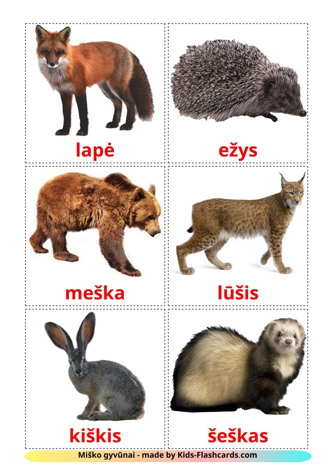 Forest animals - 22 Free Printable lithuanian Flashcards