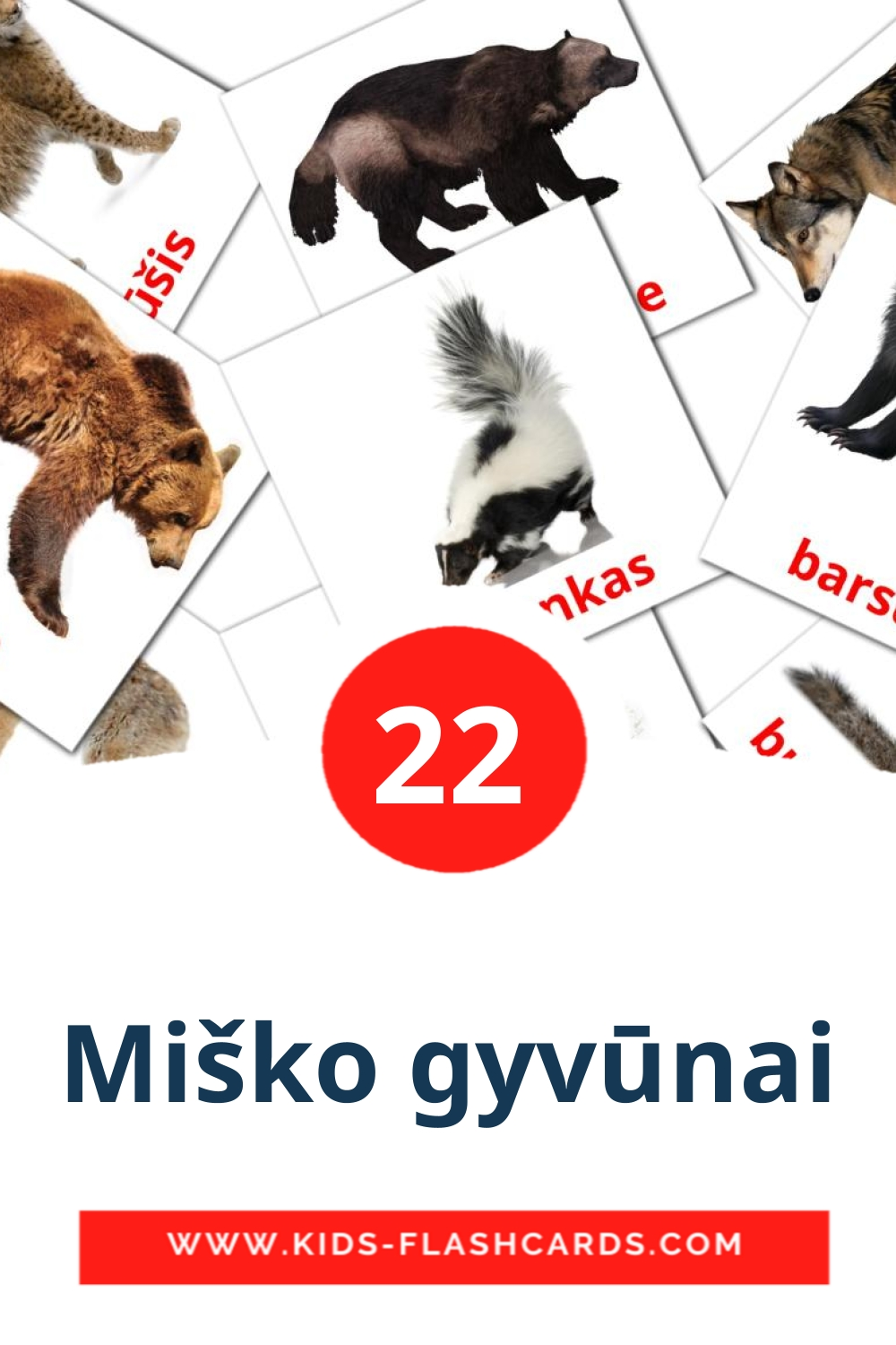 22 Miško gyvūnai Picture Cards for Kindergarden in lithuanian