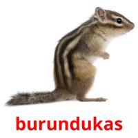 burundukas picture flashcards