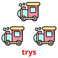 trys picture flashcards