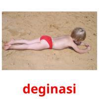 deginasi picture flashcards