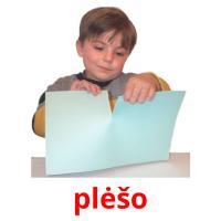 plėšo picture flashcards