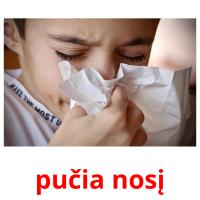 pučia nosį picture flashcards