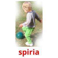 spiria picture flashcards
