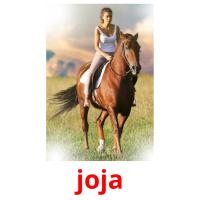 joja picture flashcards