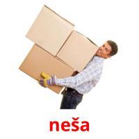 neša picture flashcards