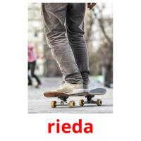 rieda picture flashcards