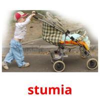 stumia picture flashcards