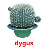 dygus picture flashcards