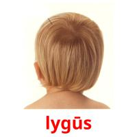lygūs picture flashcards