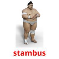 stambus picture flashcards