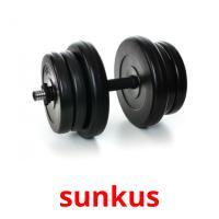 sunkus picture flashcards