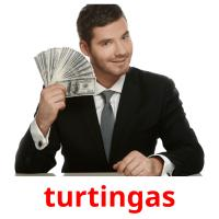 turtingas picture flashcards