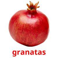 granatas picture flashcards