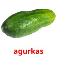agurkas picture flashcards