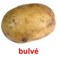 bulvė picture flashcards