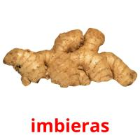 imbieras picture flashcards