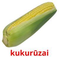 kukurūzai picture flashcards