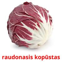 raudonasis kopūstas picture flashcards