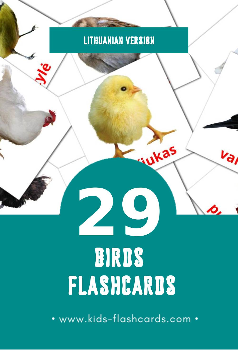Visual Paukščiai Flashcards for Toddlers (28 cards in Lithuanian)