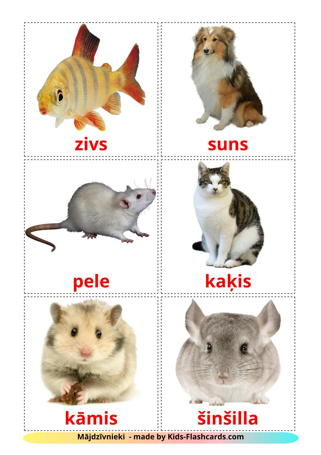 Domestic animals - 10 Free Printable latvian Flashcards
