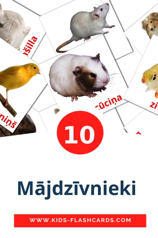 10 Mājdzīvnieki  Picture Cards for Kindergarden in latvian