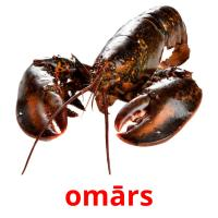 omārs picture flashcards