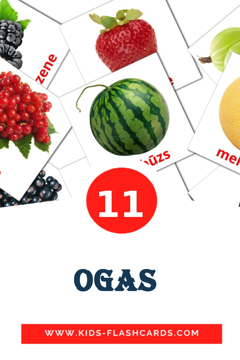 11 Ogas  Picture Cards for Kindergarden in latvian