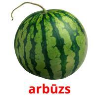 arbūzs picture flashcards