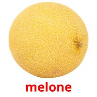 melone picture flashcards