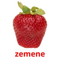 zemene picture flashcards