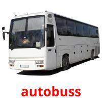 autobuss picture flashcards