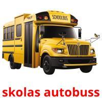 skolas autobuss picture flashcards
