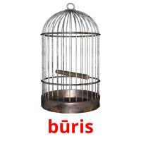 būris picture flashcards