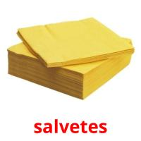salvetes picture flashcards