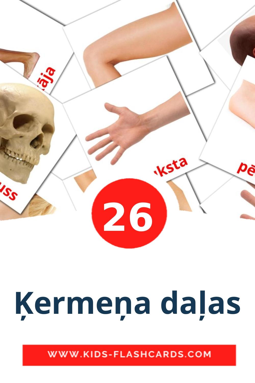 26 Ķermeņa daļas Picture Cards for Kindergarden in latvian