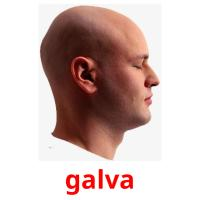 galva picture flashcards