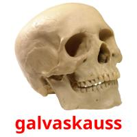 galvaskauss picture flashcards