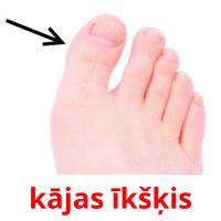kājas īkšķis picture flashcards