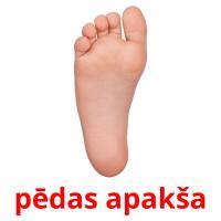 pēdas apakša picture flashcards