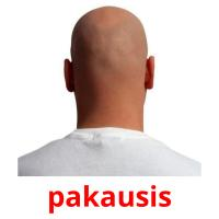pakausis picture flashcards