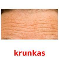 krunkas picture flashcards