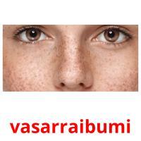 vasarraibumi picture flashcards